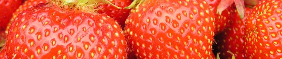 garten-erdbeere-frucht-rot-fragaria-x-ananassa